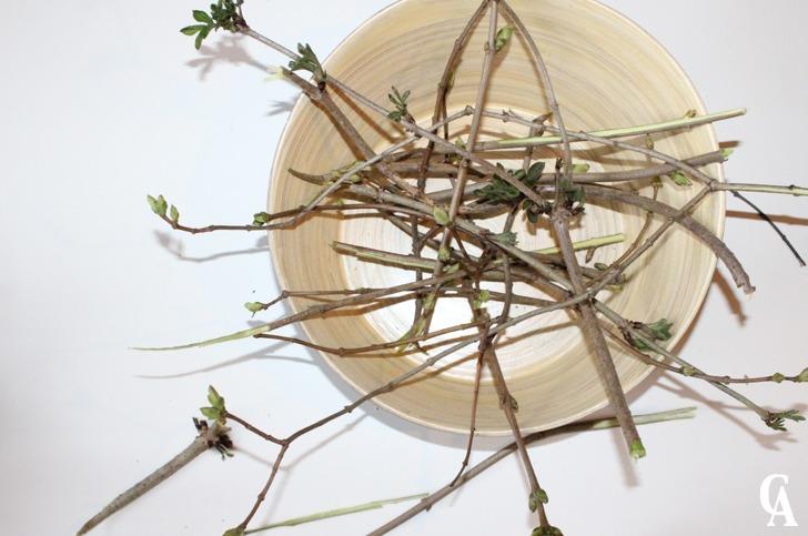 Ostergesteck_Pflanzen_in_Ostereier_gepflanzt_und_mit-Streuchern_dekoriert_Hand-im-Glück