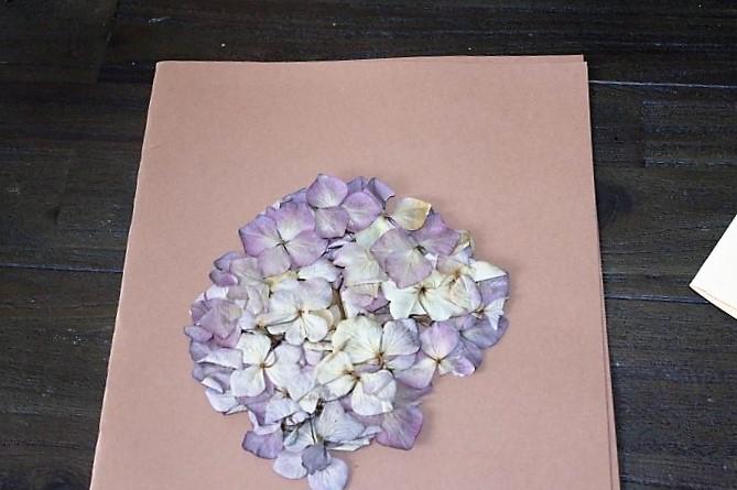 Getrocknete-Blume-auf-die-Geburtstagskarte-aufkleben-Hand-im-Glück-