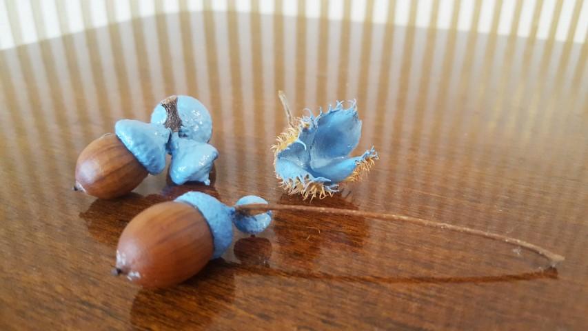 Herbstdeko selber machen Eicheln und Bucheckern anmalen