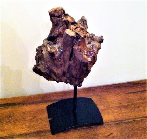 Wurzel Herz aus einer alten Baumwurzel Hand im Glück