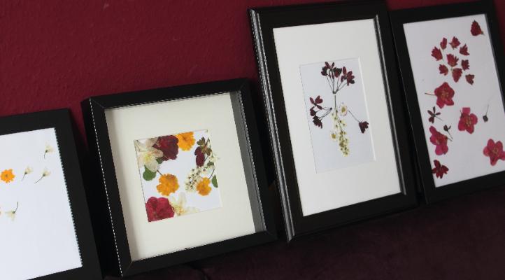 Gepresste Blumen im Bilderrahmen zum Muttertag