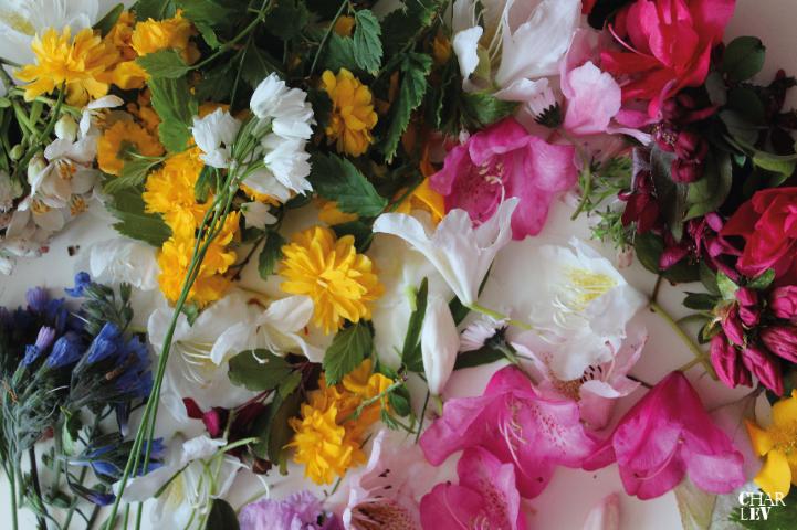 Charlev_Muttertag_Blumenrahmen_hand im Glück (