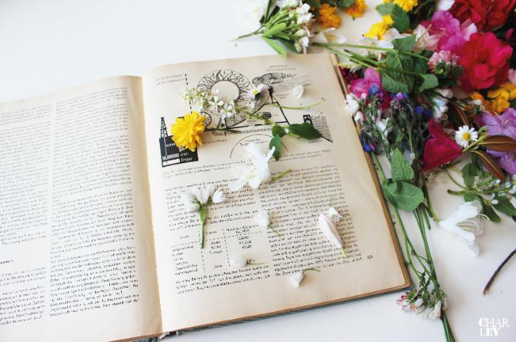 Charlev_Muttertag_Blumenrahmen_hand im Glück