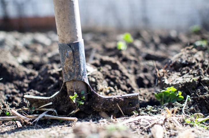 Bauern Garten selber machen Hand im Glueck