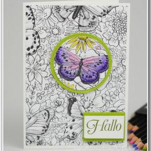 spotlight-technique-stampin-up-schmetterlinge-auf Karten selber gestalten Hand im Glueck