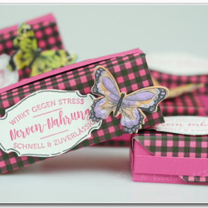 tutorial-goodie-box-stampin-up-schmetterlinge- Hand im Glueck