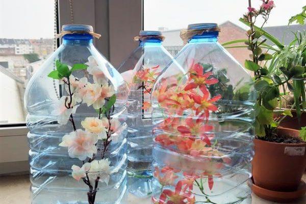 DIY Flascheninsektarium