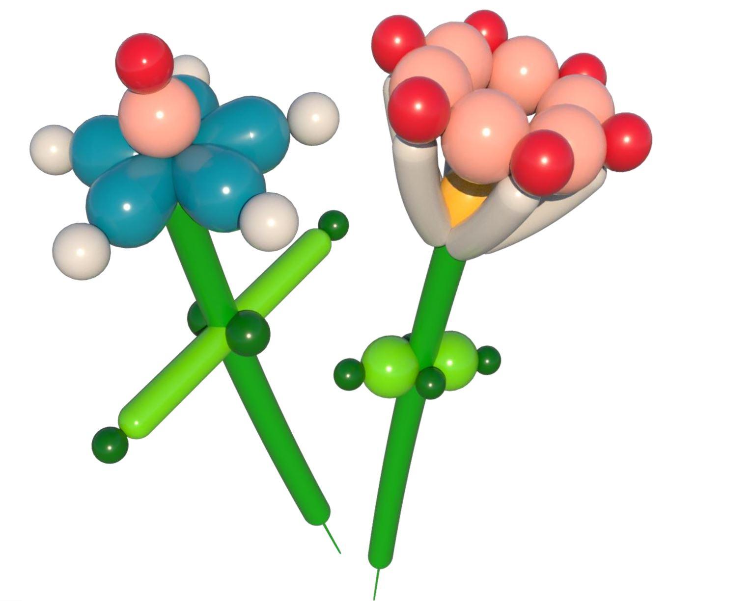 "DIY Blumen aus Ballons ""Lilly & Carla"""