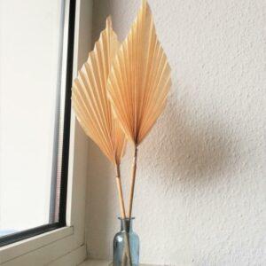 Trockenblume selber machen DIY Deko